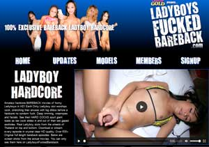 Best premium sex website if you are a lover of bareback transsexual porn films
